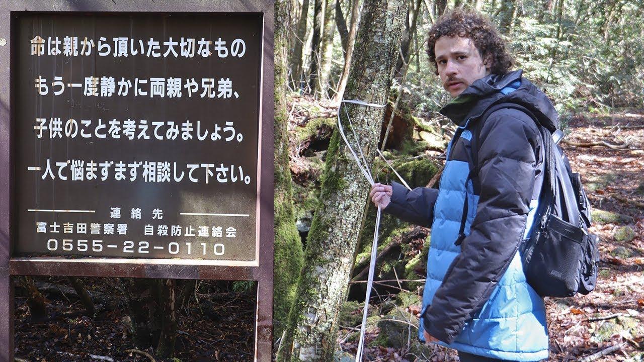 """Visité el """"bosque de los suicidas"""" en Japón…"""