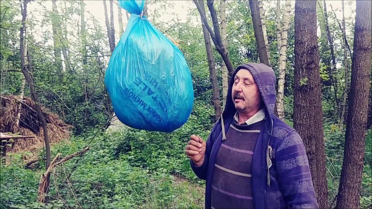 🔥 Борьба за сквер и свободу в Екатеринбурге. Чиновники-разгильдяи. Штраф за «Путин *****»