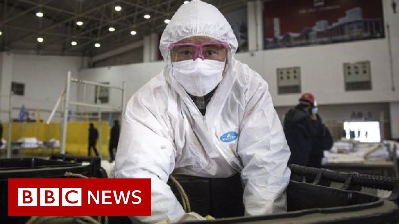 Coronavirus disease named Covid-19 – BBC News