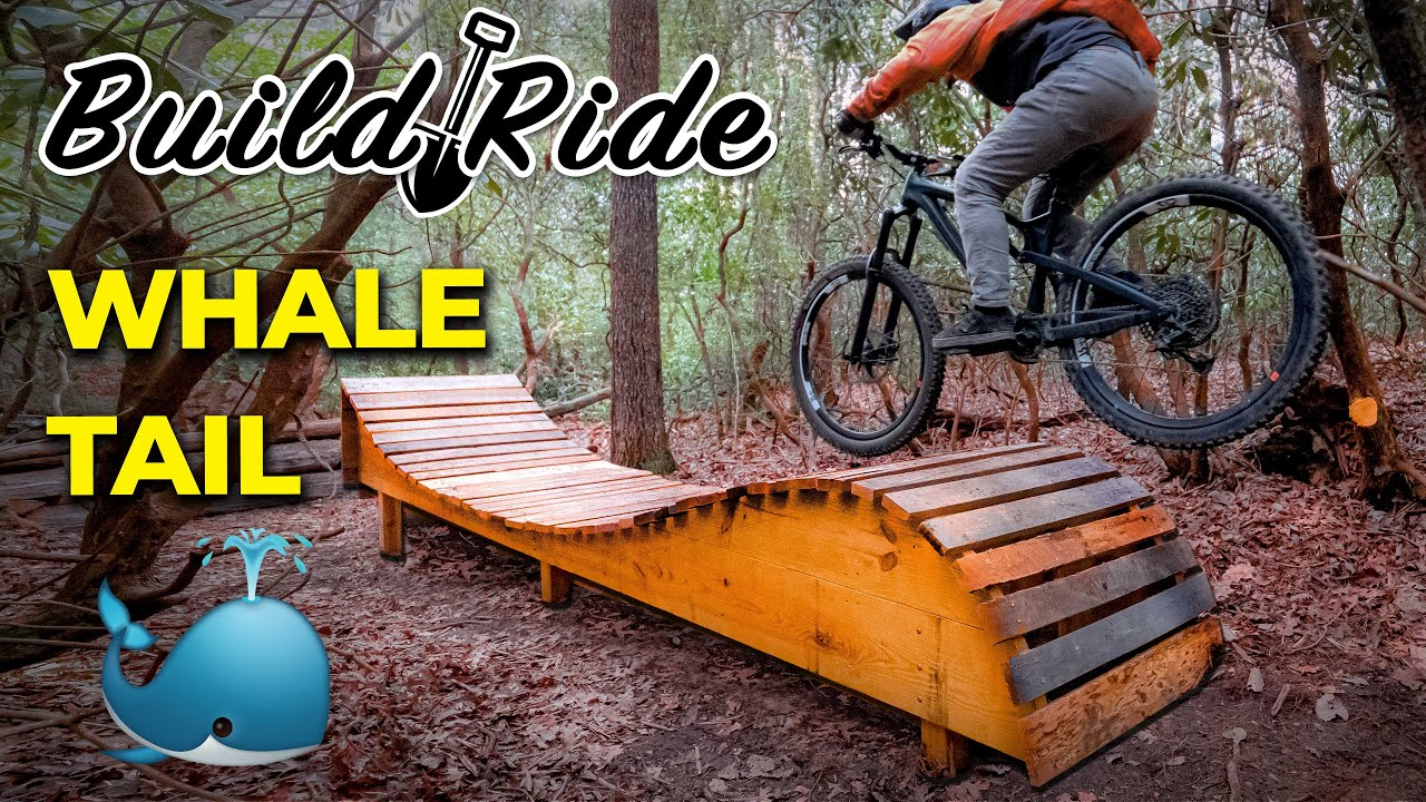 Building and Riding the Backyard Whale Tail