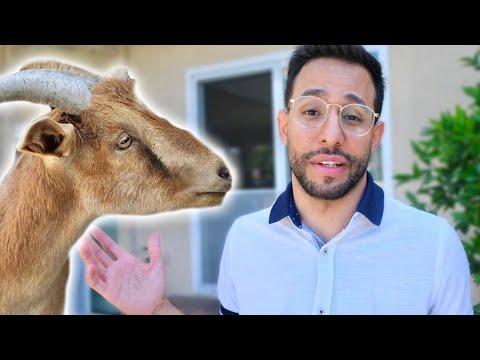 I Bought a Pet Goat! | Anwar Jibawi