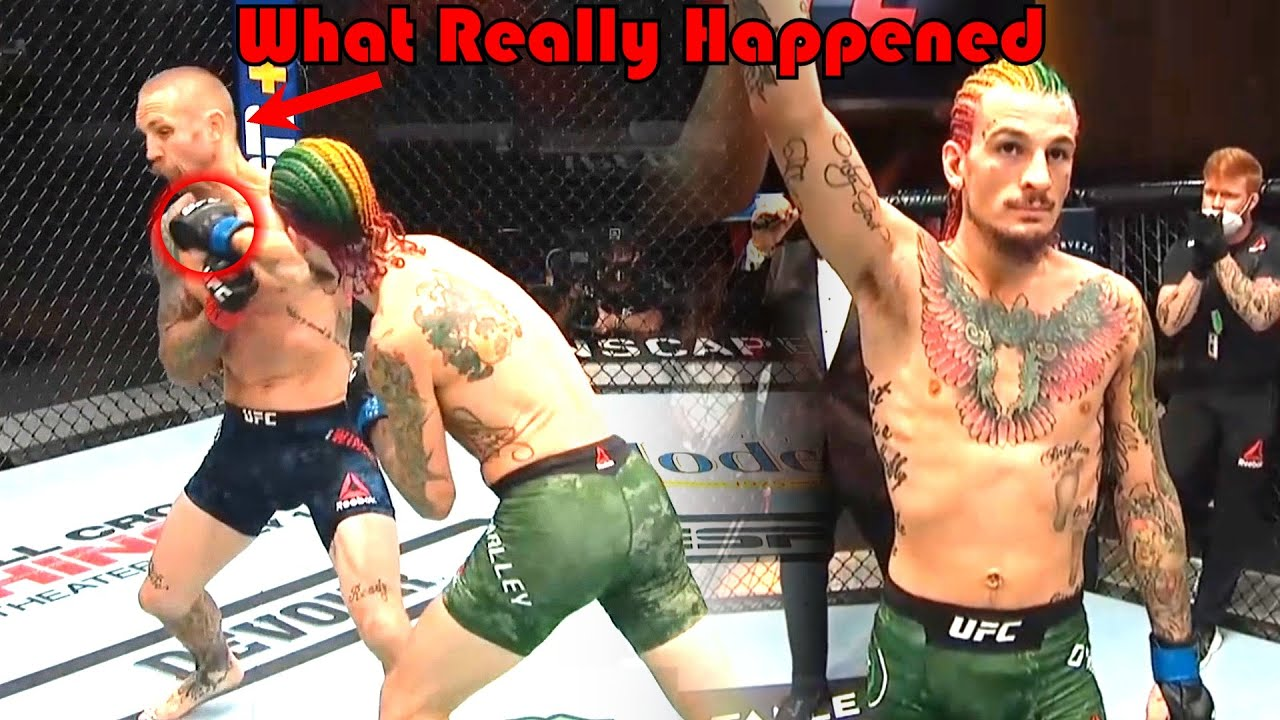 SUGAR SHOW!!! What Really Happened at UFC 250 (Sean O'Malley vs Eddie Wineland)