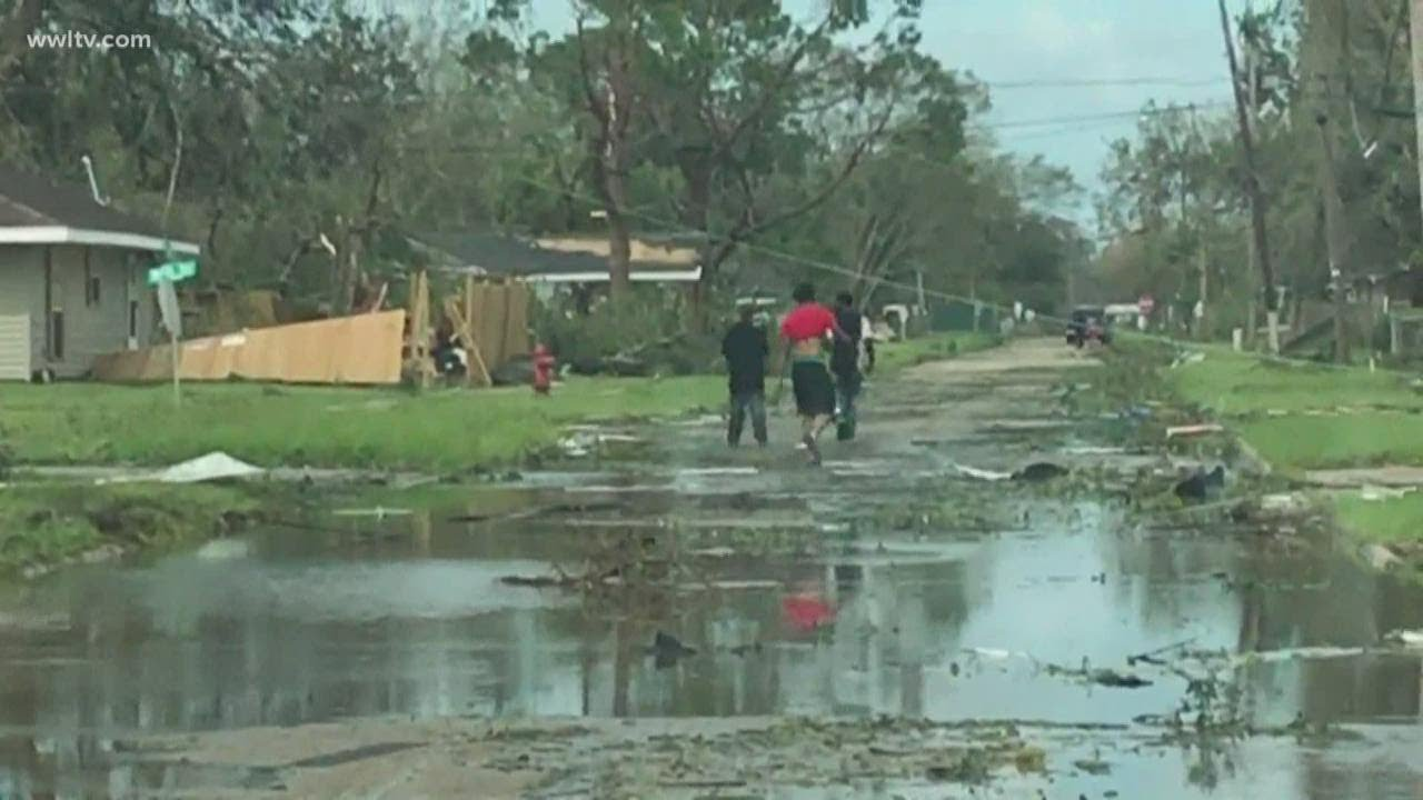 Hurricane Laura aftermath and damage | Uprooted trees, power lines knocked down across Lake Charles