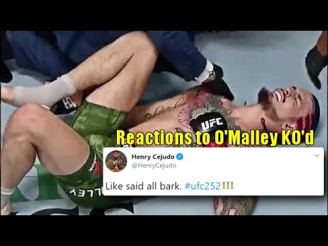 Pro Fighters react to Sean O'Malley's injury & loss to Marlon 'Chito' Vera at UFC 252