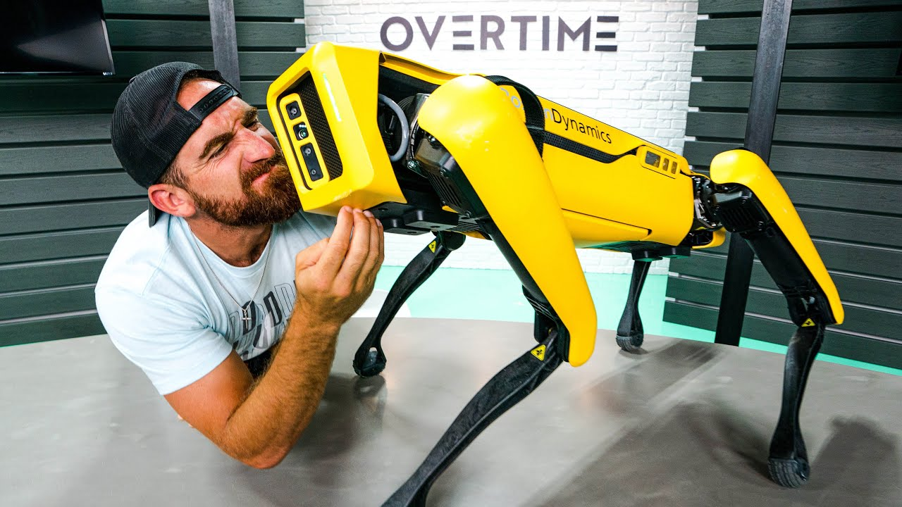 Real Life Robot Dog