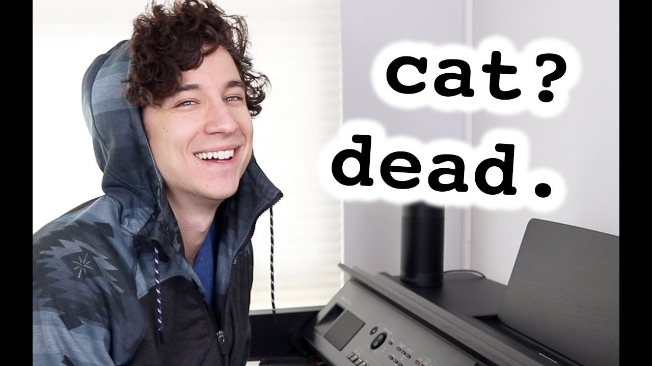 When you finally write a hit song but your cat is dead
