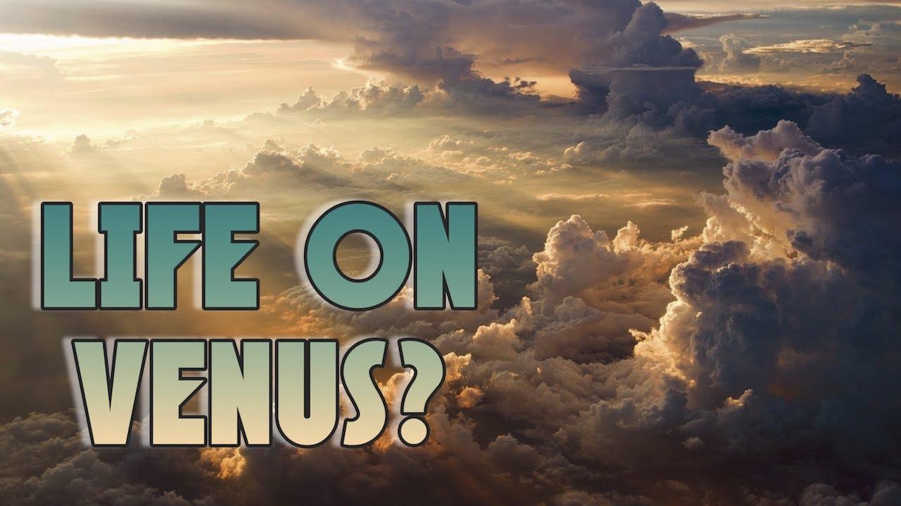 Did We Just Detect Life on Venus?