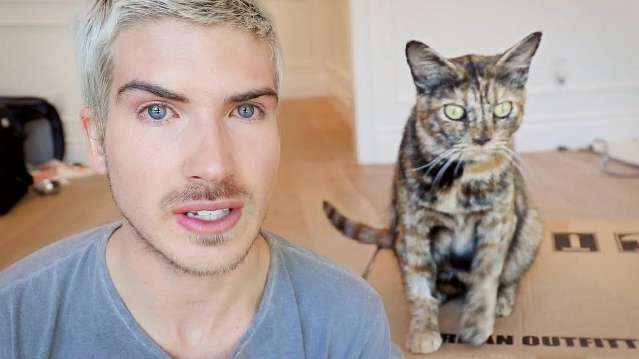 Her Kittens Didn't Make It…