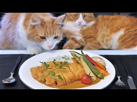 Japanese Katsu Curry (Pork Cutlet)