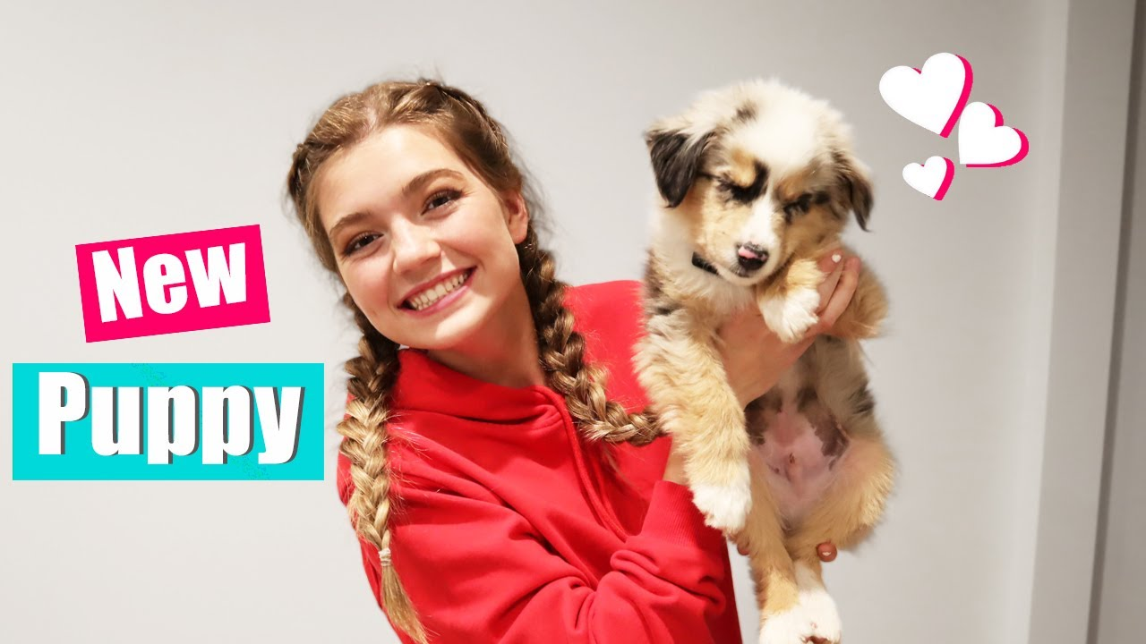 Bringing Home My New Puppy! Puppy Reveal!