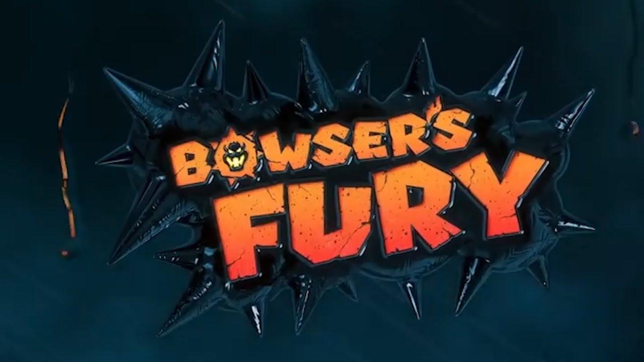 Bowser's Fury (dunkview)